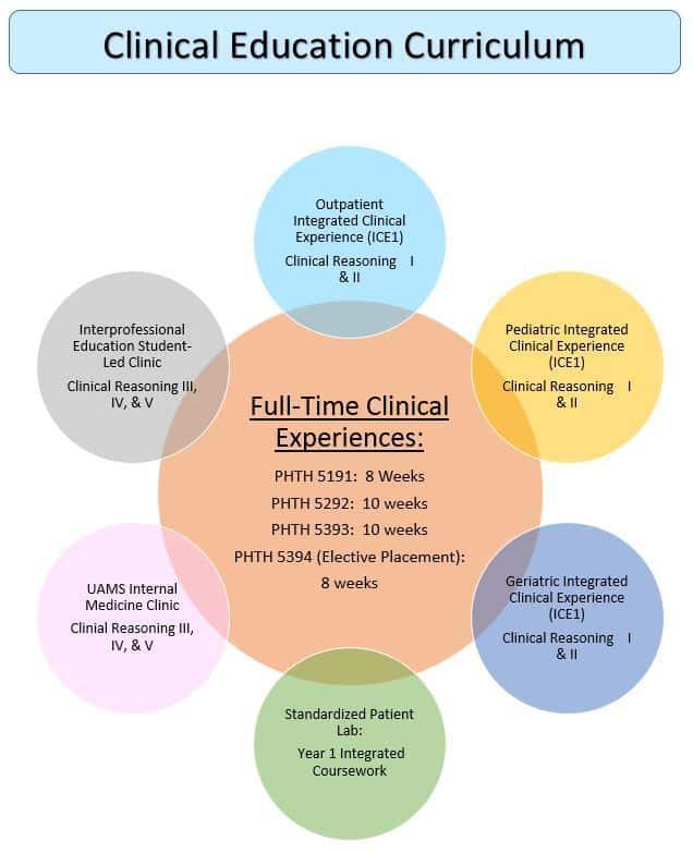 PT Clinical Education Curriculum