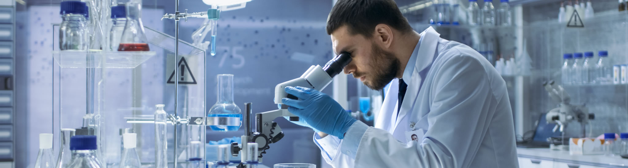 Medical Laboratory Sciences | College of Health Professions